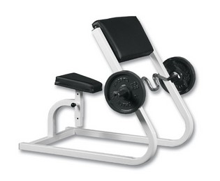 WILDER FW-010 Seated Preacher Curl