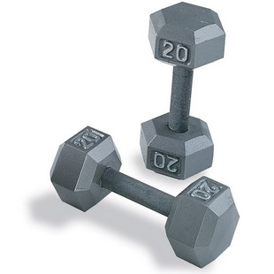 Z BODY SOLID SDS DUMBELLS