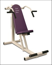 WC-003 Shoulder Press / Lateral Pull