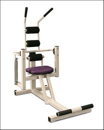 WC-006 Ab Crunch / Back Extension