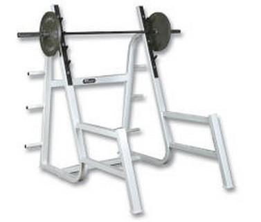 Wilder FW-019 Squat Rack